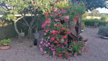 Résultat concours des maisons fleuries